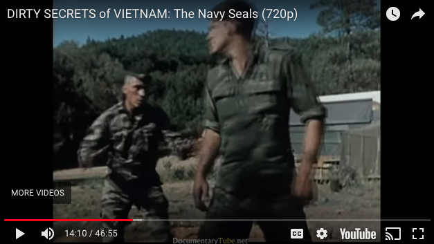 DIRTY SECRETS of VIETNAM: The Navy Seals