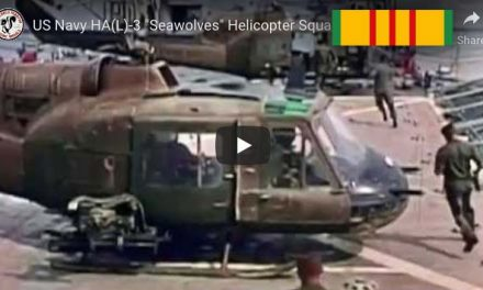 """US Navy HA(L)-3 """"Seawolves"""" Helicopter Squadron over the Mekong Delta"""